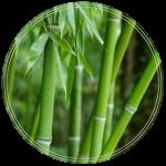idrolato di bambu-min