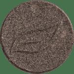 19 - Taupe irisé